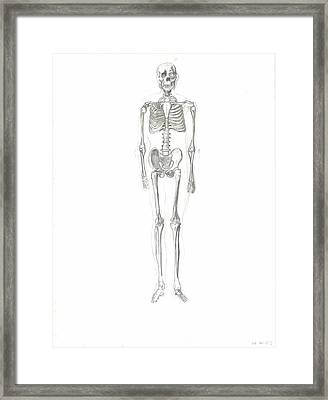 Skeleton Framed Print by Joseph  Arico