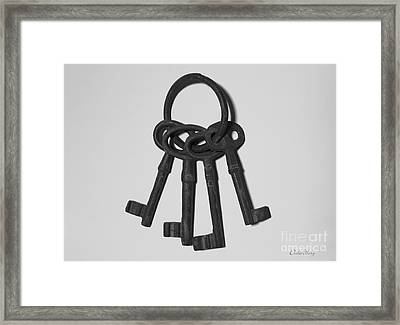 Framed Print featuring the photograph Skeleton Keys by Dodie Ulery