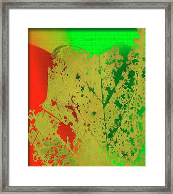 Framed Print featuring the photograph Skeleton Leaf by Larry Bishop