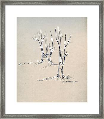 Sketch 4 Framed Print by Joan Kamaru