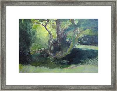 Sketch Of A Shady Glade. Framed Print by Harry Robertson