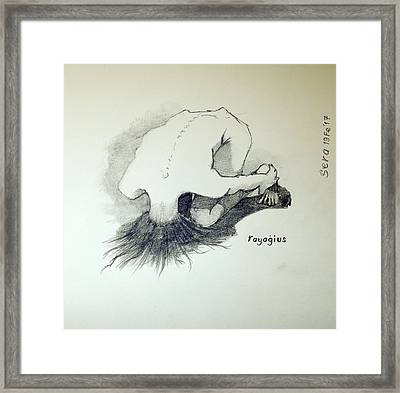 Framed Print featuring the painting Sketch Of Sera.10.03 by Ray Agius