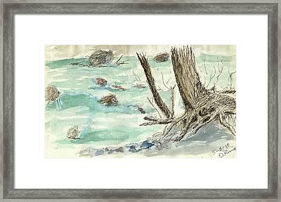 Sketchbook 001 Framed Print by David King