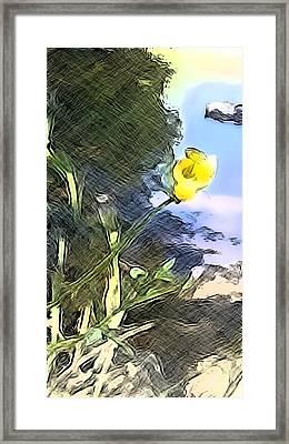 Sketchy Framed Print by William Goodson
