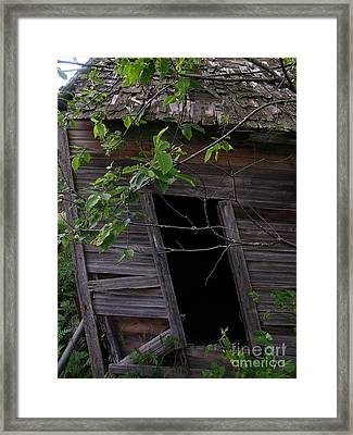 Skewed 2 Framed Print by The Stone Age