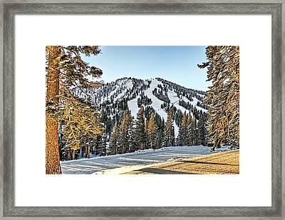Ski Runs Framed Print