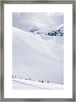 Ski Tracks On Whistler Blackcomb Mountain, British Columbia, Canada Framed Print by Radius Images