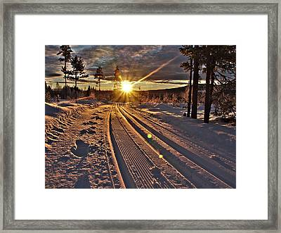 Ski Trails With Sun Beams Framed Print by Tamara Sushko