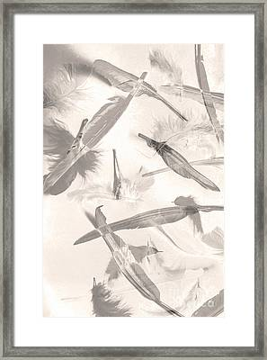 Skies Of A Feather Framed Print