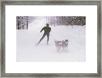 Skijoring In Maine. Model Released Framed Print by Bill Curtsinger