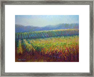 Sonoma County Vineyard Framed Print by Jill Keller Peters