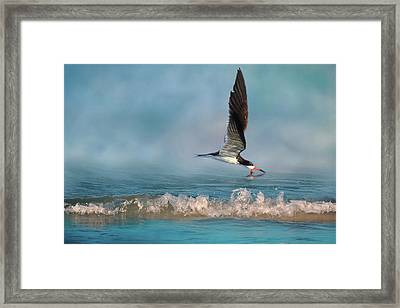 Skimming Off The Top 2 Framed Print