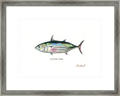 Skipjack Tuna Framed Print by Juan Bosco