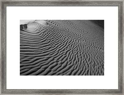 Skn 1078 Designed By Nature Framed Print