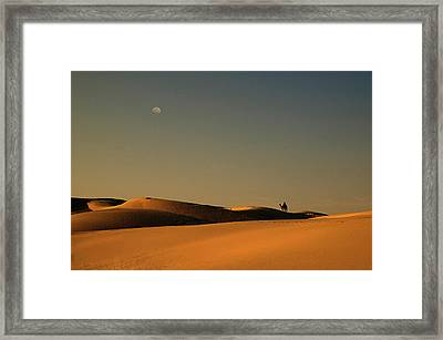 Skn 1117 Camel Ride At 6 Framed Print