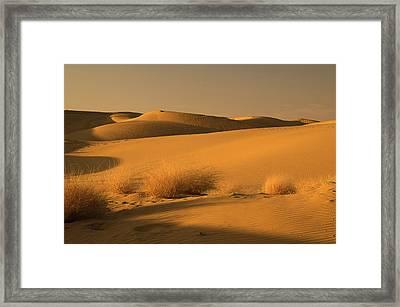 Skn 1124 The Desert Landscape Framed Print by Sunil Kapadia