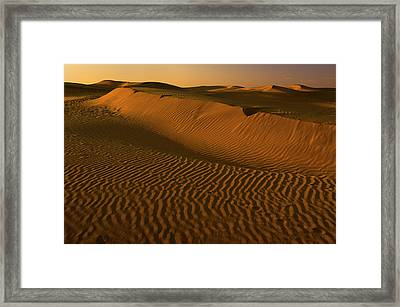 Skn 1127 The Golden Dunes Framed Print