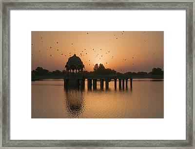Skn 1372 Sunrise Flight Framed Print