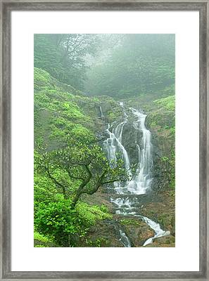 Skn 3758 Admiring Your Beauty Framed Print