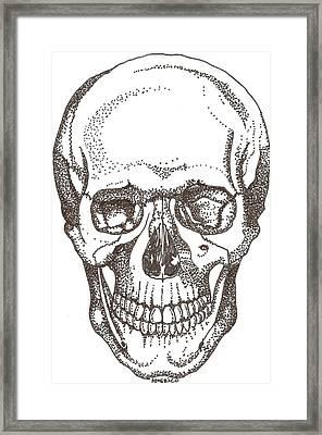 Skull Framed Print by Americo Salazar