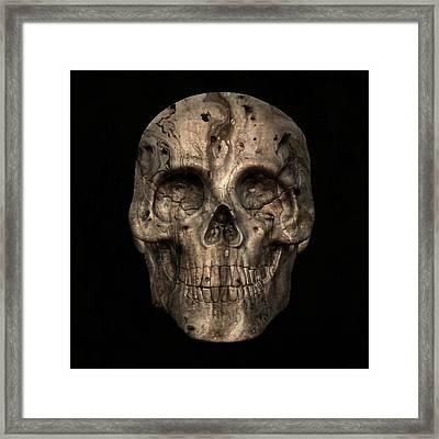 Skull Art 2 Framed Print by Sumit Mehndiratta