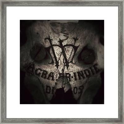 Skull Framed Print by Dave Edens