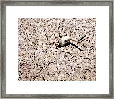 Skull In Desert 2 Framed Print by Kelley King