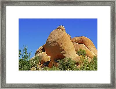 Skull Rock Joshua Tree National Park California Framed Print