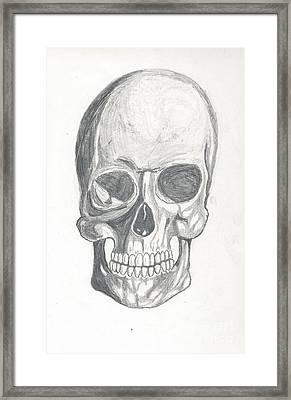 Skull Study 2 Framed Print