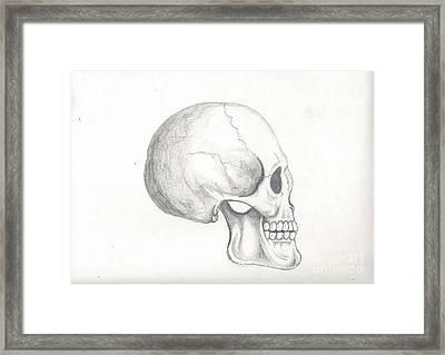 Skull Study Framed Print