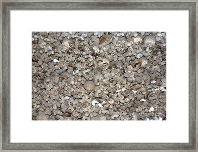 Skulls And Bones Framed Print by Michal Boubin