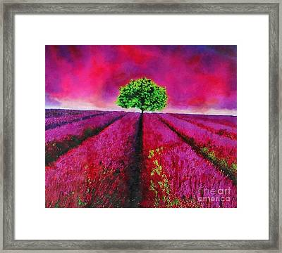 Sky And Field Aflamed Framed Print