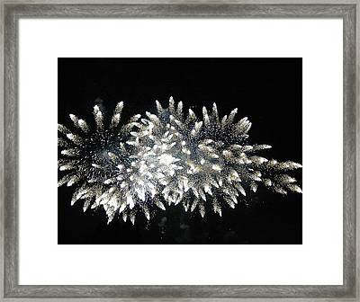 Sky Flowers Framed Print by Dan Fulk