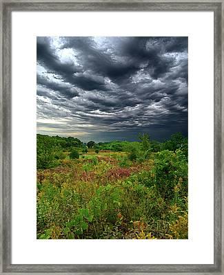 Sky High Framed Print by Phil Koch