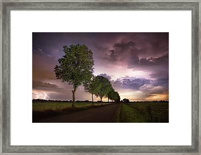 Trees And Lightning Framed Print by Martin Podt