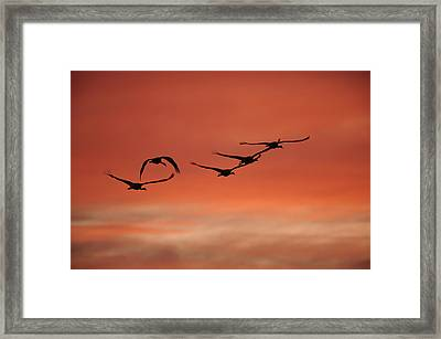 Sky On Fire Framed Print by Philippe Francis