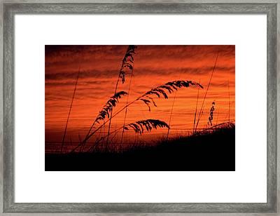 Sky On Fire Framed Print by Tamra Lockard
