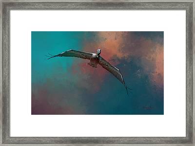 Sky Soaring Framed Print