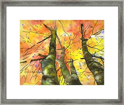 Sky View Framed Print by Yolanda Koh