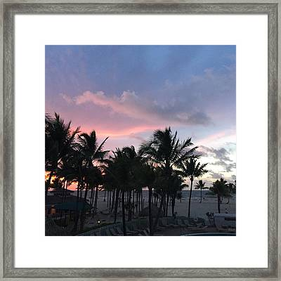 Sky With Palm Trees Framed Print