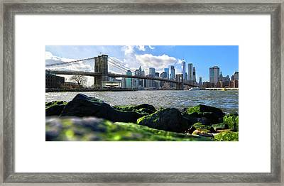 Framed Print featuring the photograph Skyline by Mitch Cat