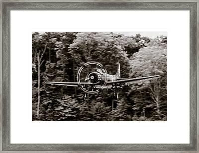 Skyraider Black And White Framed Print by Liza Eckardt