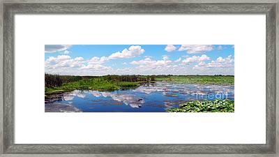 Skyscape Reflections Blue Cypress Marsh Near Vero Beach Florida C5 Framed Print