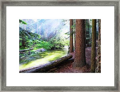 Slanting Sunlight On River Framed Print
