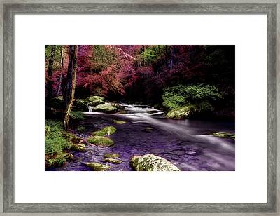 Sleep Walking Framed Print