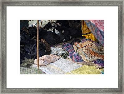 Sleepin Child Framed Print by Tim Gainey