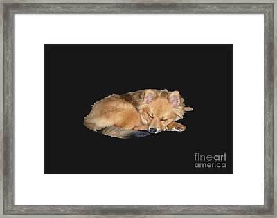 Sleeping Baby Girl  Framed Print