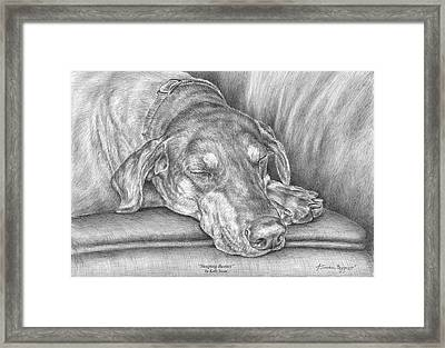 Sleeping Beauty - Doberman Pinscher Dog Art Print Framed Print by Kelli Swan
