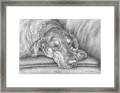 Sleeping Beauty - Doberman Pinscher Dog Art Print Framed Print by Kelli Swan