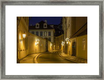Sleeping Beauty Framed Print by Marek Boguszak